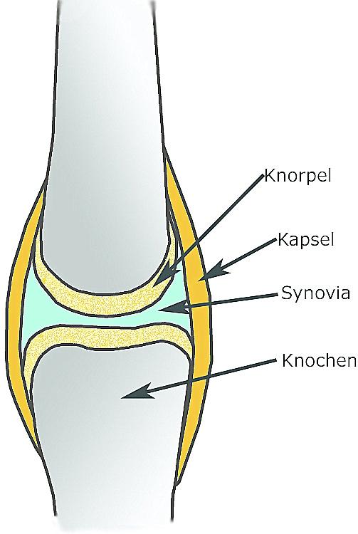 behandlung osteoporose